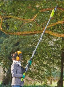 Electric Pole Saw