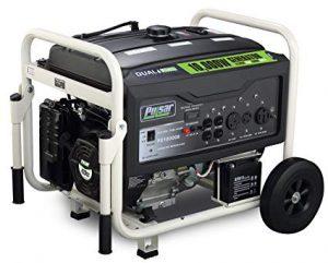 Pulsar PG10000B Portable Dual Fuel Generator